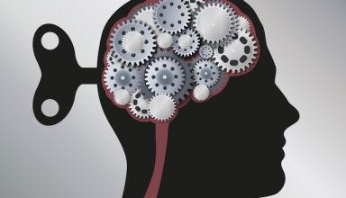image de cerveau